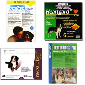 Image of Heartworm Meds