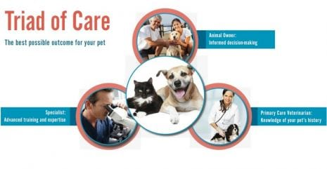 triad-of-care