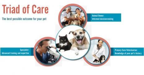 triad-of-care
